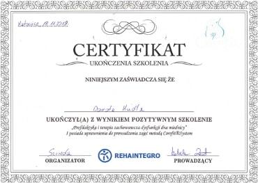 Dyplom 2018 - Profilaktyka i terapia zachowawcza dysfunkcji dna miednicy
